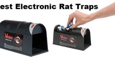 electronic-rat-traps