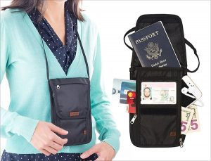 Best waterproof passport holders