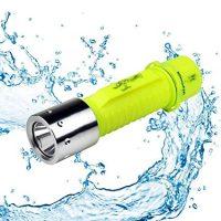 BlueFire CREE XM-L2 Professional Diving Flashlight